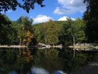 Magyar Nemzeti Parkok Hete 2020 – Értékek és élmények nyomában