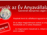 Az Év Anyavállalata 2012